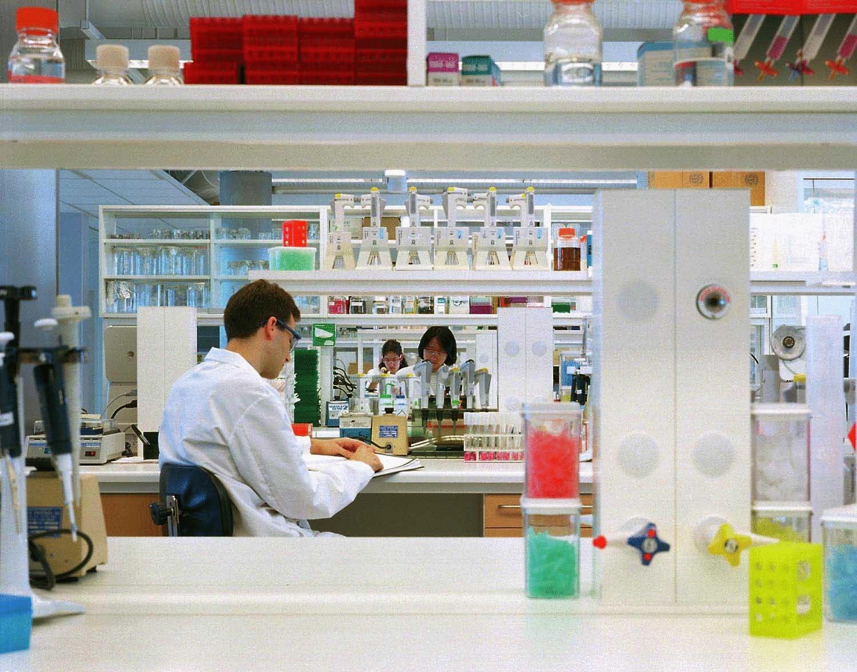 лекарство против паразитов в организме