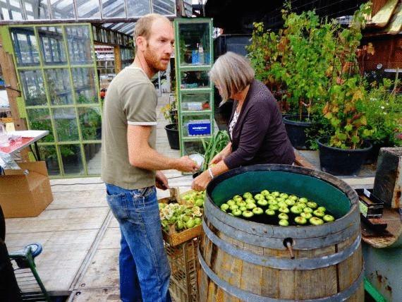 Хоть этот инновационный проект сада