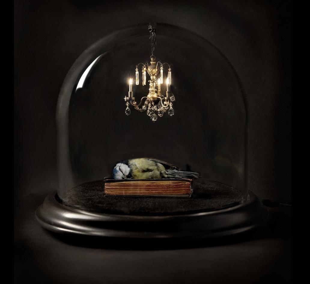 Есть ли жизнь после смерти: Факты и доказательства: http://econet.ru/articles/65842-est-li-zhizn-posle-smerti-fakty-i-dokazatelstva