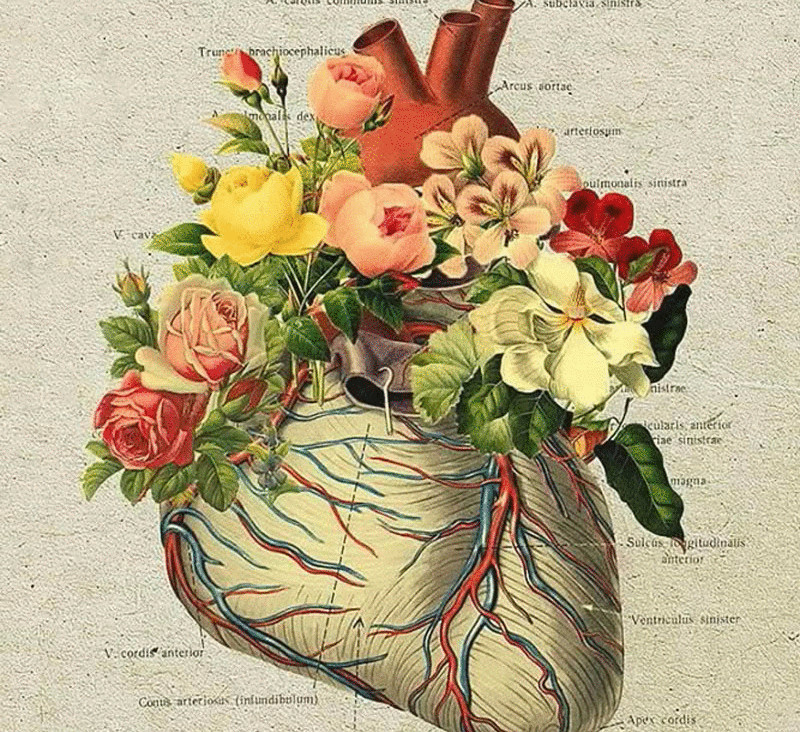 Самое высокое давление крови у человека в — Сайт о гипертонии