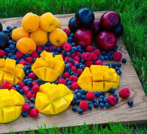 торсунов здоровое питание