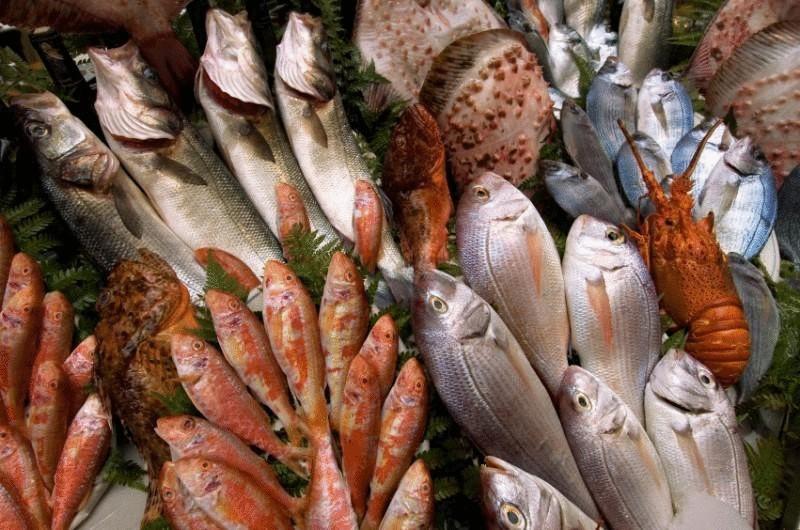 предложения к чему снится рыба на рынке засоленая несвежая объявлений продаже