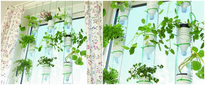 Пластиковые бутылки для гидропоники