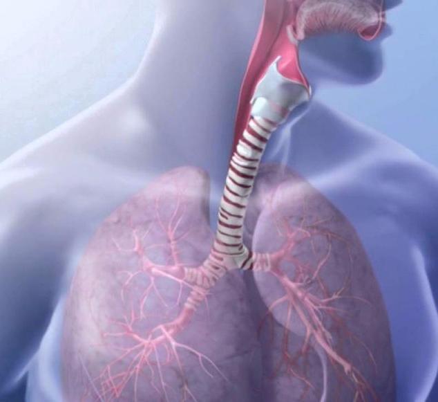 Дыхательное упражнение Райха: распускаем мышечный панцирь