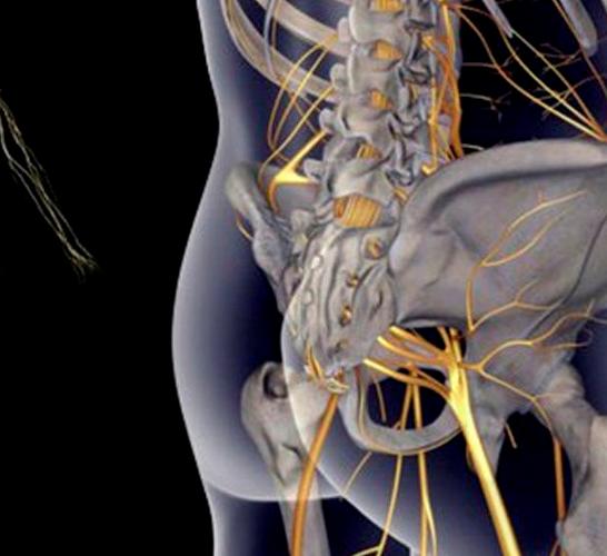 Упражнения для седалищного нерва с картинками 6