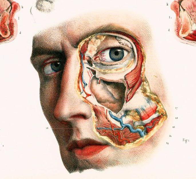 Массаж при внутричерепном давлении у взрослых видео: диагноз, классификация, симптомы, что это такое