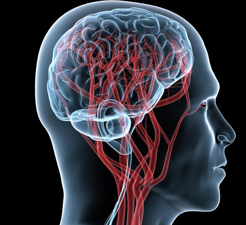 Внутричерепное давление: симптомы, лечение, признаки повышенного ВЧД и как его проверить