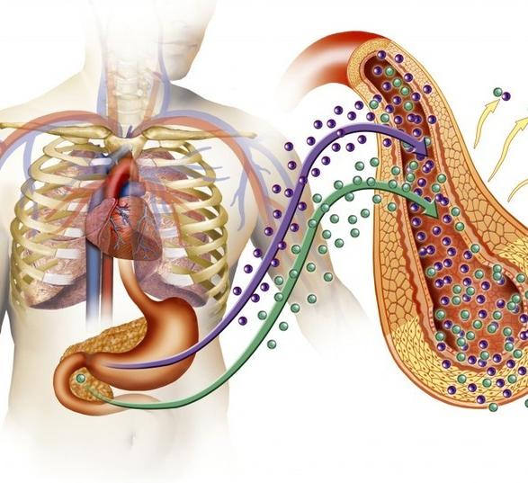 лекарство для снижения холестерина статины