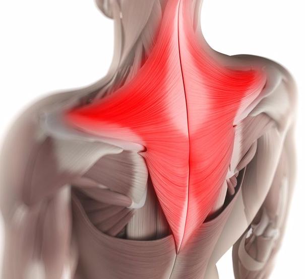 Учащенное сердцебиение при остеохондрозе шейного