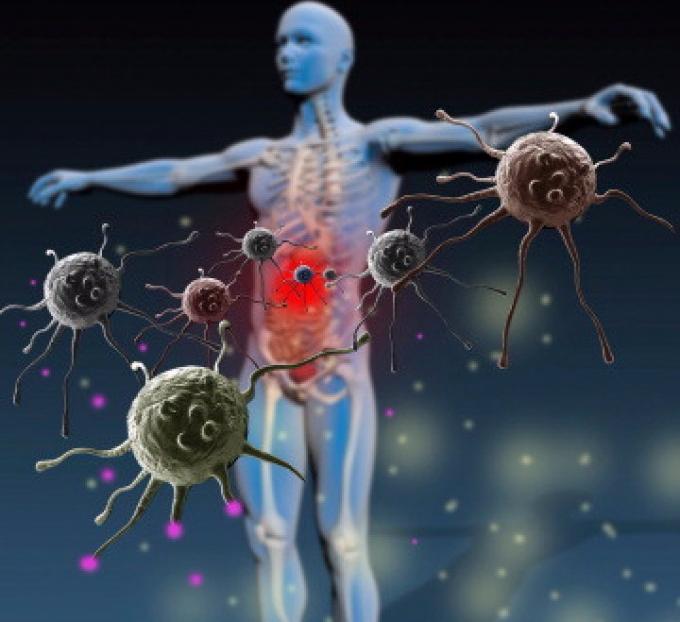 иммунитет и вирусная инфекция