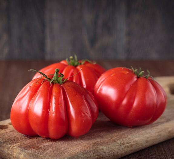 Ранние помидоры для средней полосы россии