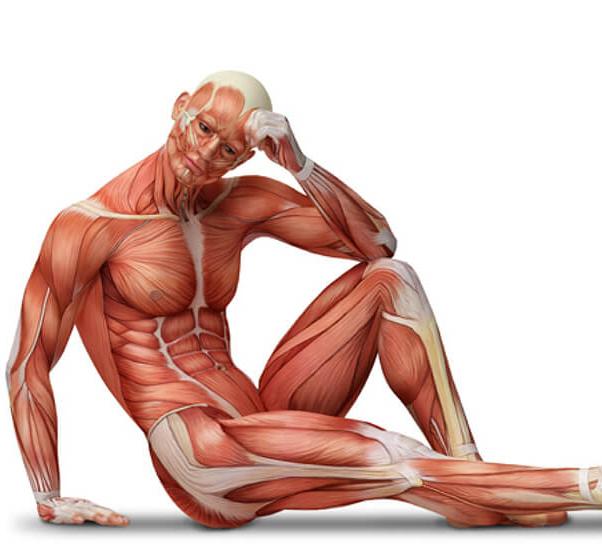 Атрофия мышц ног: симптомы и лечение