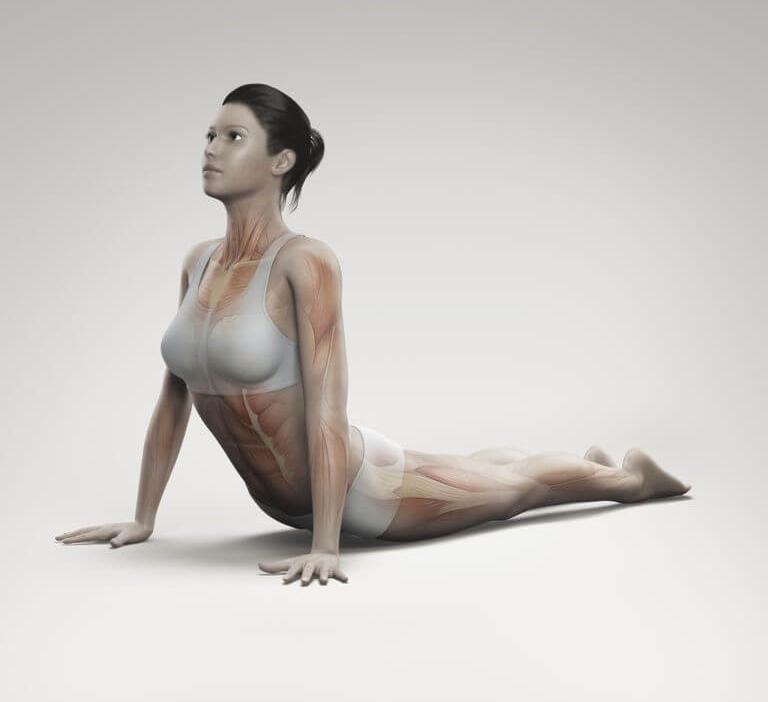 Фитнес дома Простые но действенные упражнение для красивых рук
