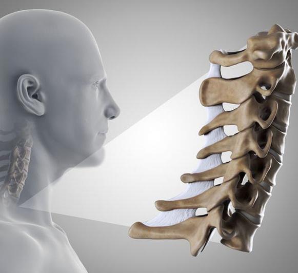 Основные действия для профилактики остеохондроза