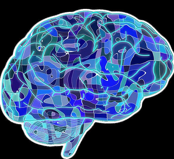 Конфликты, путаница и противоречия: Секреты работы мозга подростка