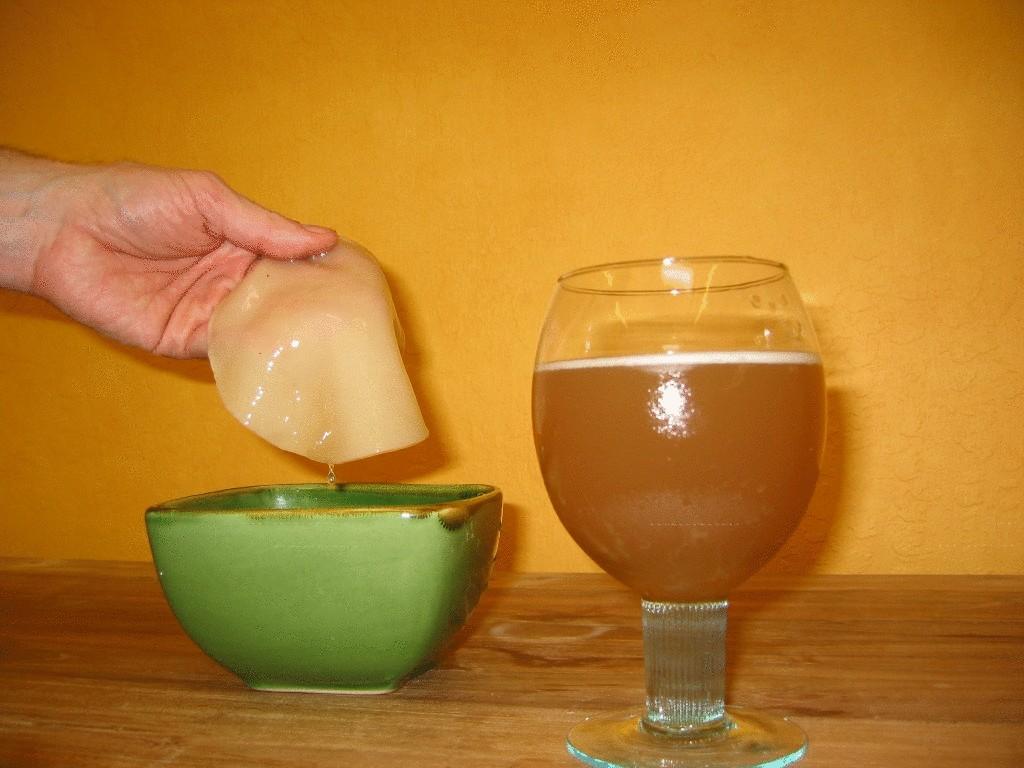 Можно похудеть принимая чайный гриб