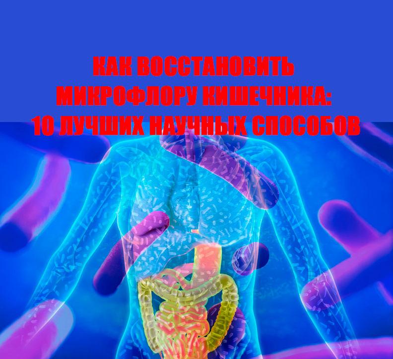 Лучшее средство для восстановления микрофлоры кишечника