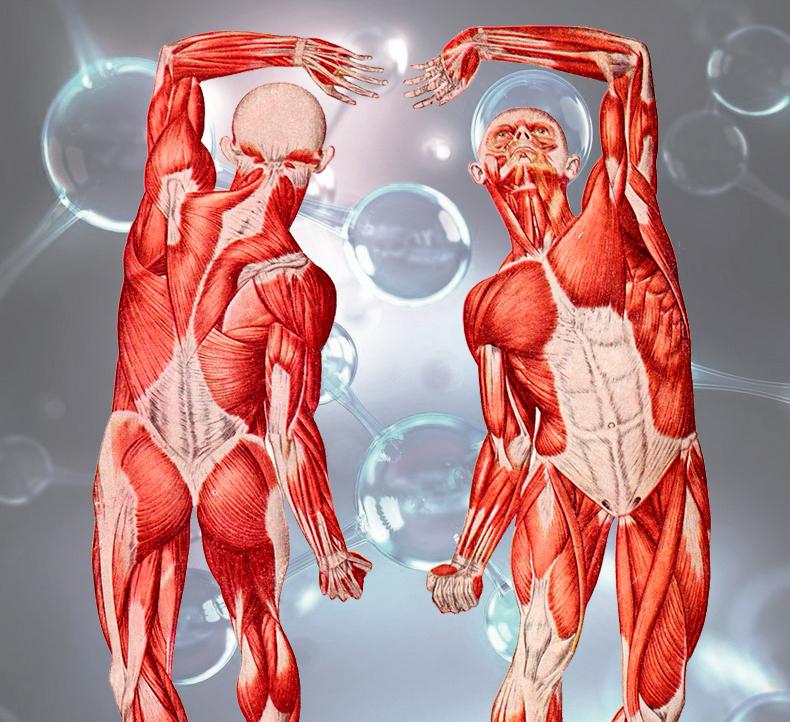 Чистка организма неумывакин перекись водорода