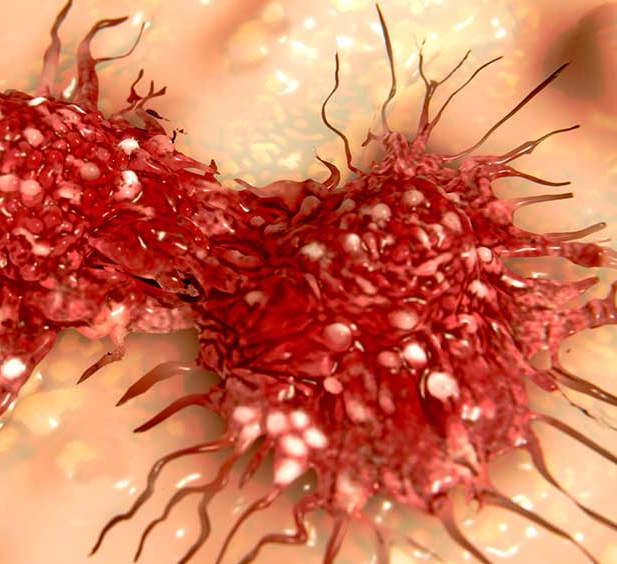 Жиры для лечения рака