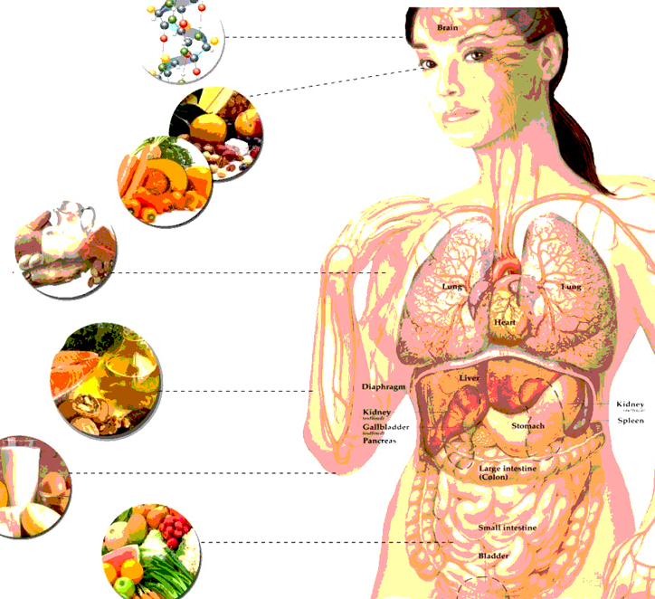Супер продукты для здорового питания. ТОП-5