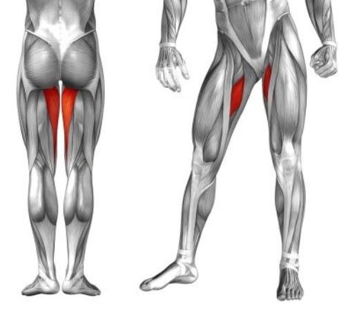 Упражнения для подтяжки кожи ног