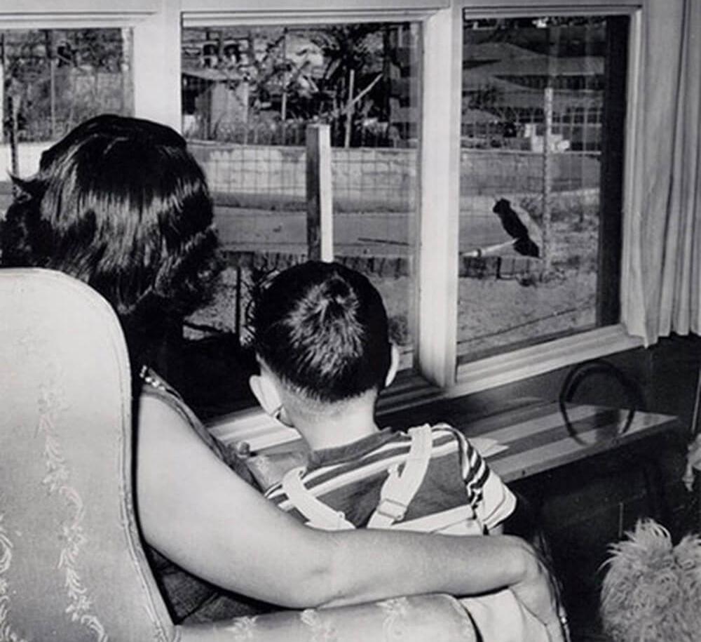 Соло-родительство: мама в разводе