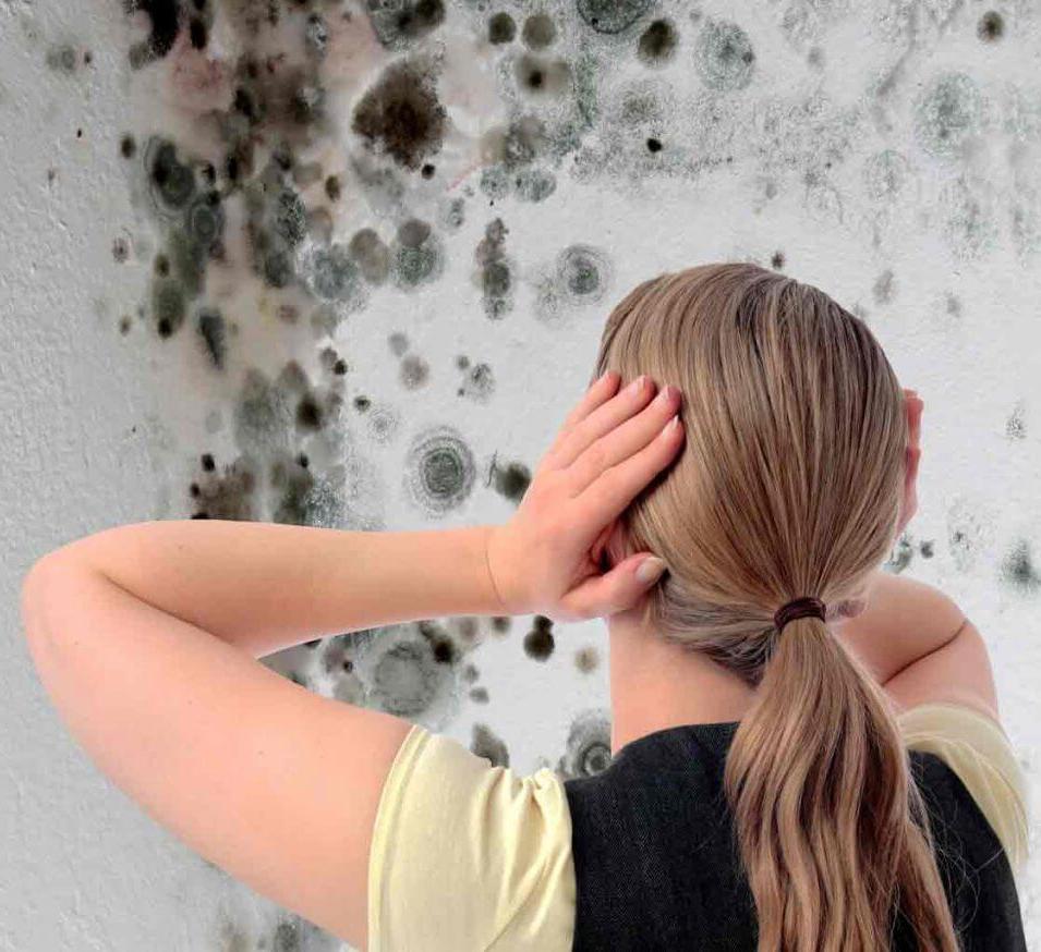 Почему в доме сильная влажность воздуха