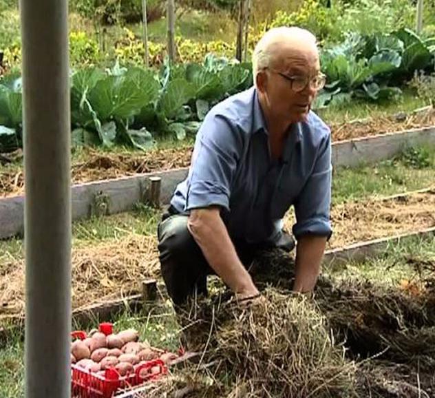 Умный огород Замяткина: участок не знает лопаты уже 20 лет рекомендации