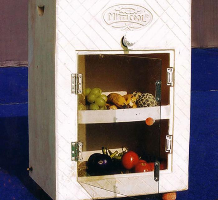 Холодильник в лесу