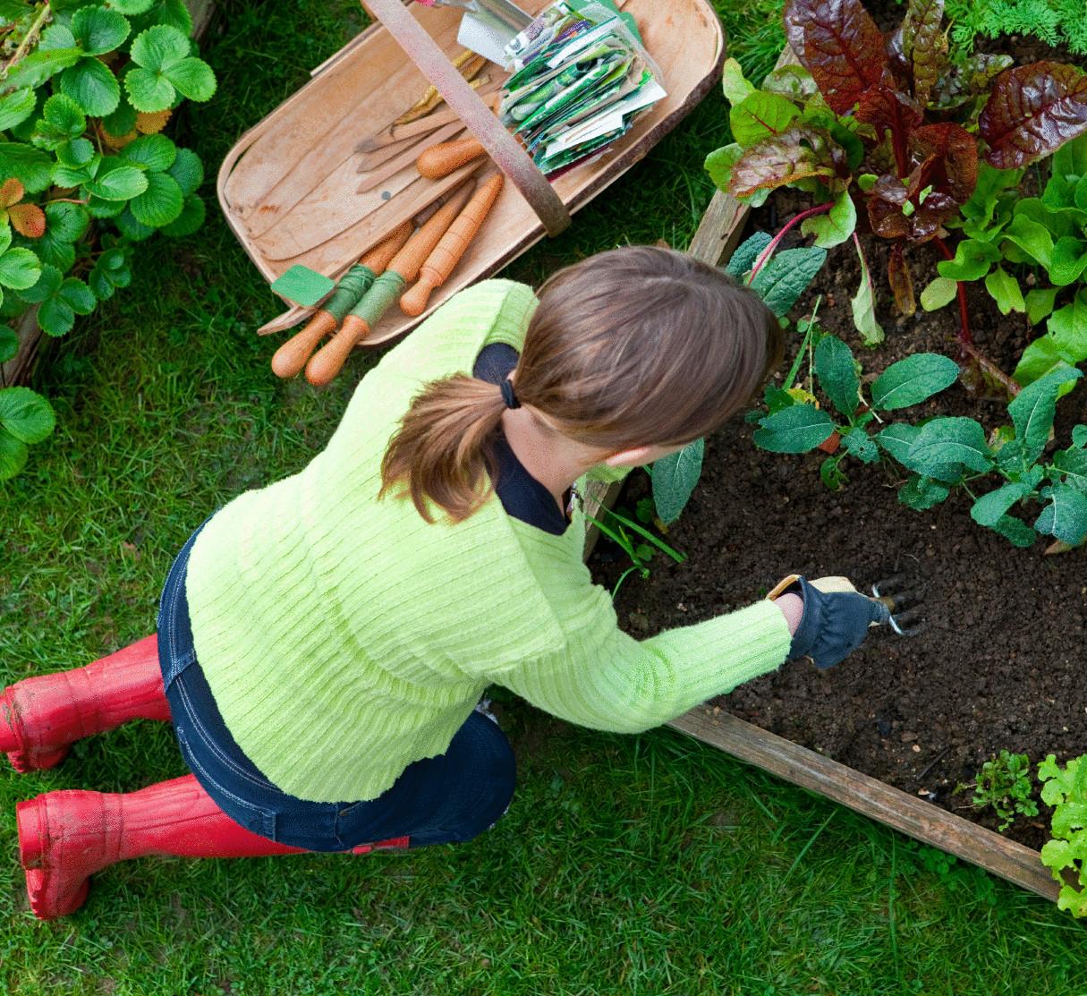 Работы на огород своими руками