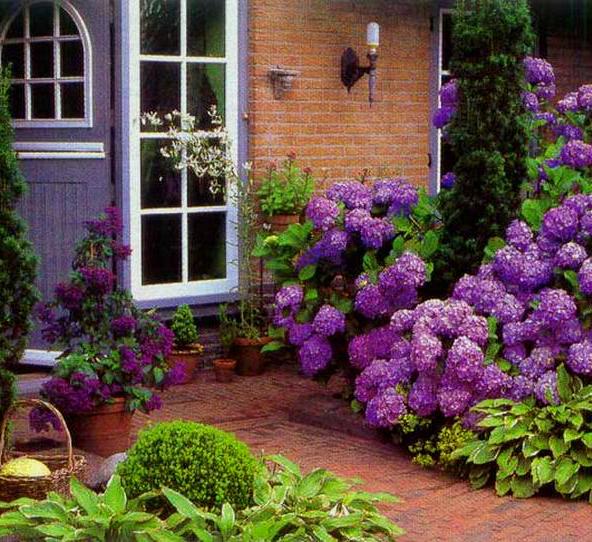 Красивая клумба перед домом