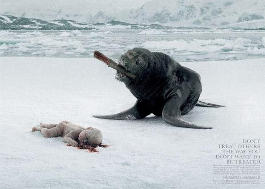 humans-for-animals-makes-a-shocking-image-in-regard-to-animal-cruelty-seal-france-2005