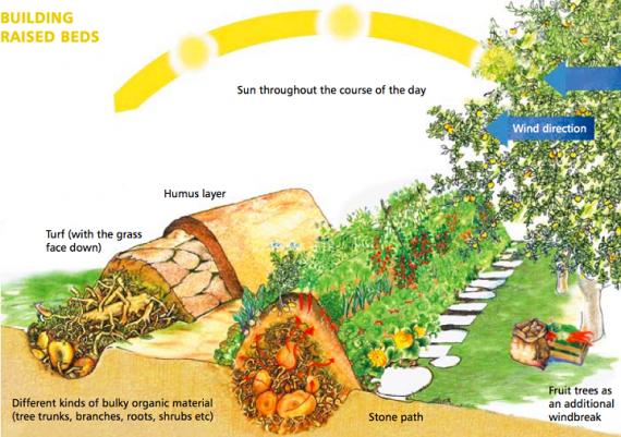 Органическое земледелие, пермакультура: hugel высокая грядка