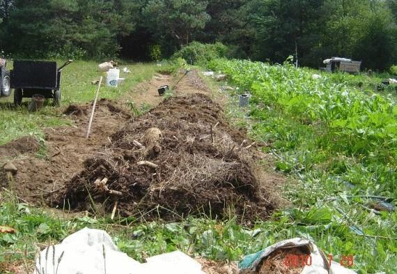 Органическое земледелие, пермакультура: формирование грядки Хольцера