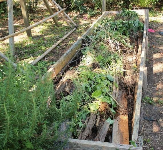 Органическое земледелие, пермакультура: грядка в рамке