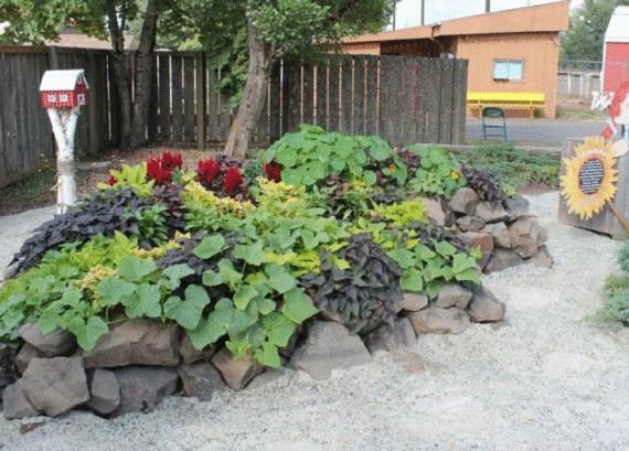 Органическое земледелие, пермакультура: высокие грядки обложены камнями