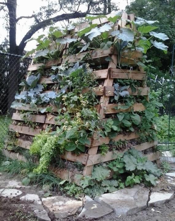 Органическое земледелие, пермакультура: грядка оббитая деревом