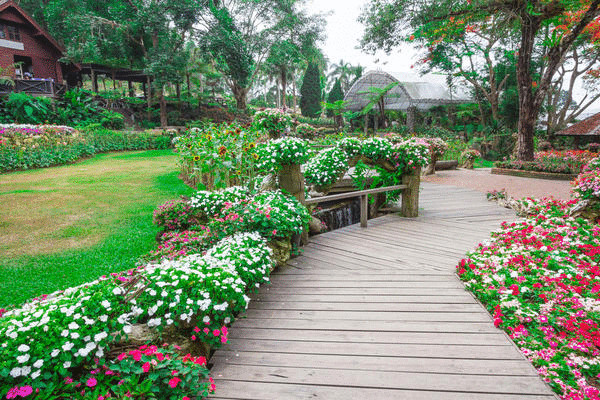 9 материалов для устройства садовой дорожки