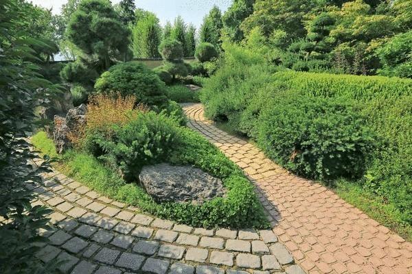 """Декоративные кустарники для """"ленивого сада"""""""