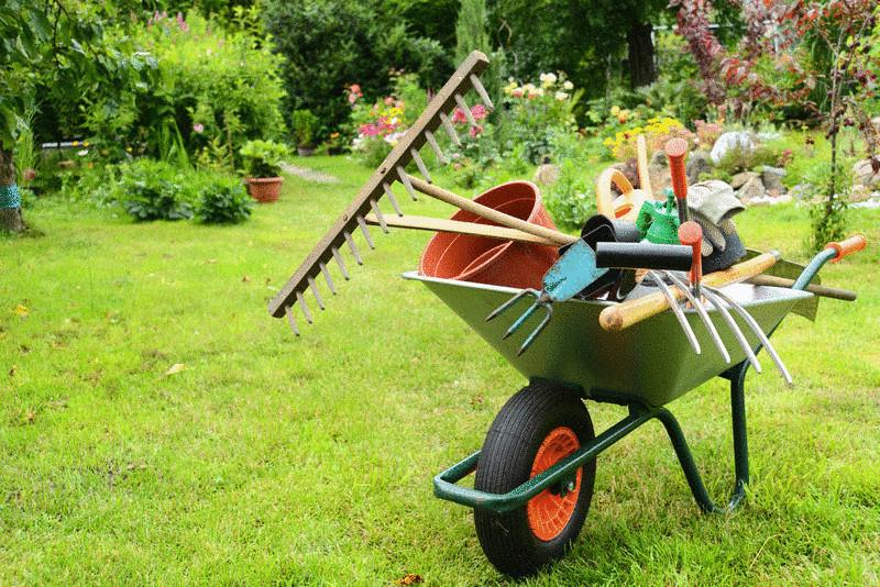 Раскрываем маленькие хитрости опытных садоводов