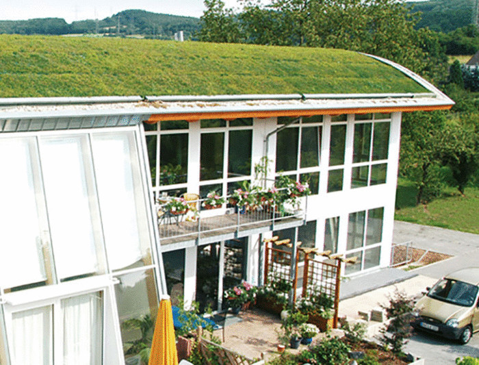 Эко-дом с зеленой крышей.