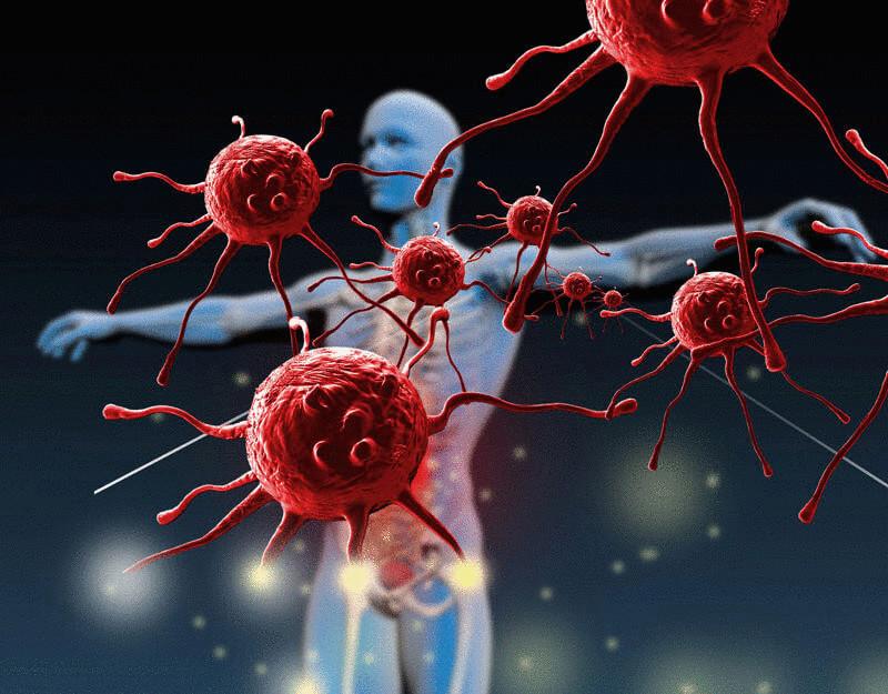 Влияние среды обитания на иммунную систему человека