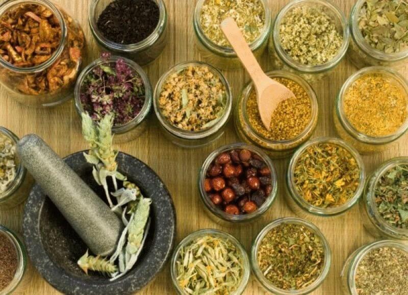 травы для очищения кишечника для похудения