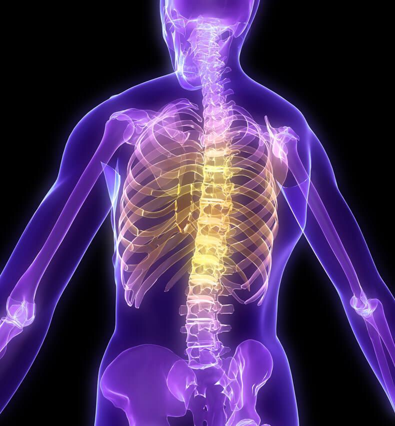 Простой тест для оценки текущего состояния вашего позвоночника и суставов