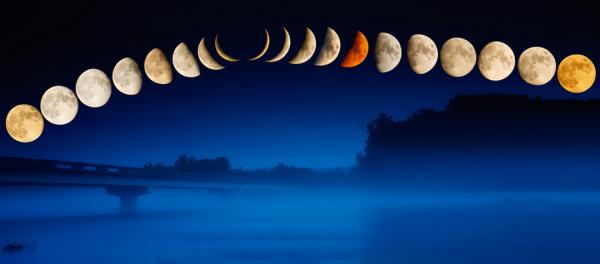 Раскрываем секрет: влияние Луны на растения