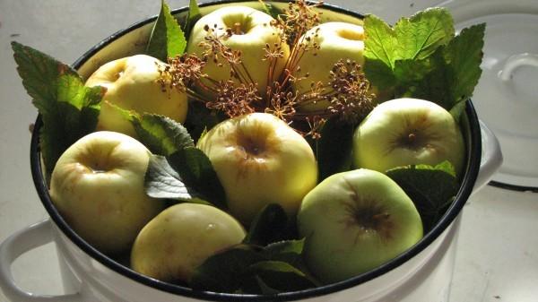 Старинные русские рецепты моченых яблок