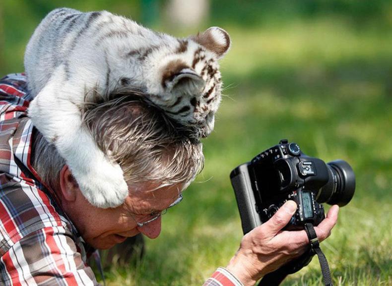 Приколы из жизни людей в картинках фотограф