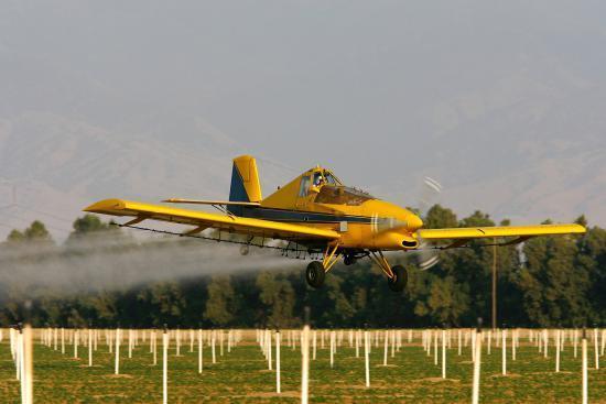 Чем грозят обычные пестициды?