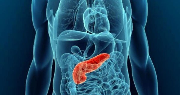 8 рецептов народной медицины для лечение поджелудочной железы