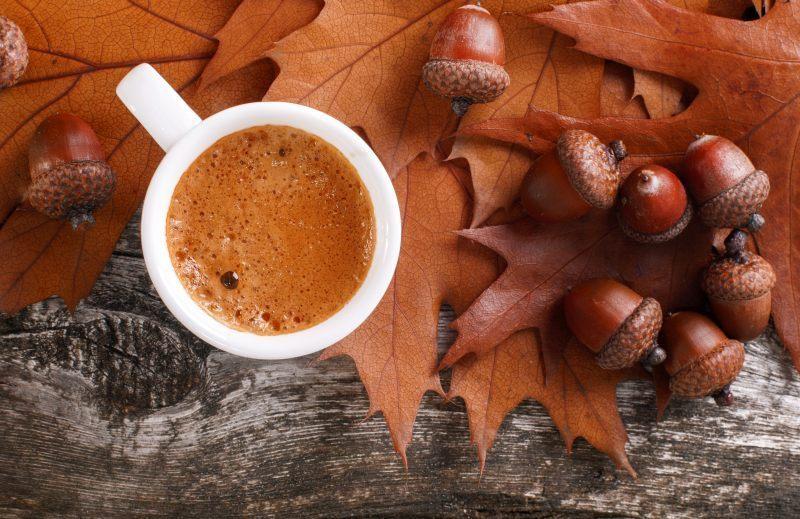 Напиток из желудей: вкус кофе и снижение сахара в крови!